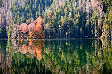 fotografie krajiny