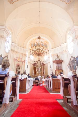 fotografování svateb plzeň